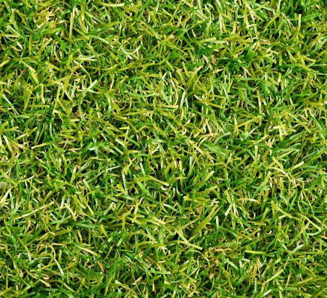 royal-grass-wave-top