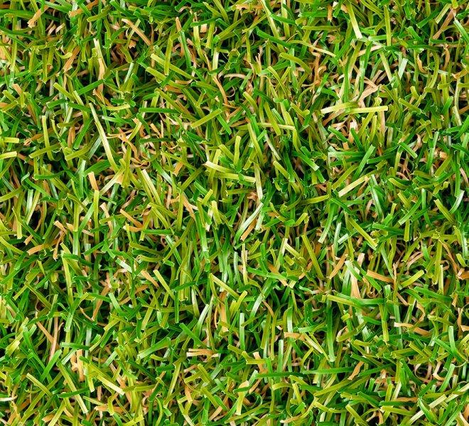 royal-grass-lush-top